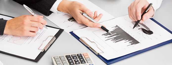 financial administrative iis biodonostia
